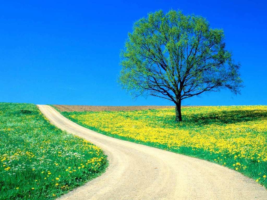 Nature Wallpaper Hd Hd Backgrounds Nature Backgrounds 30065 Sana
